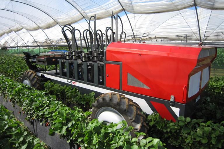 Eis o agrobot